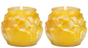 2.5-3 days Ghee Oil candle (L) lotus shape, a pair. (Y)